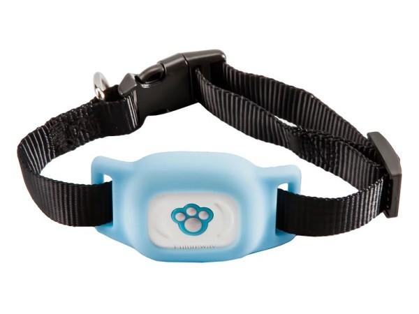 GPS-трекер для собак Futureway FP03