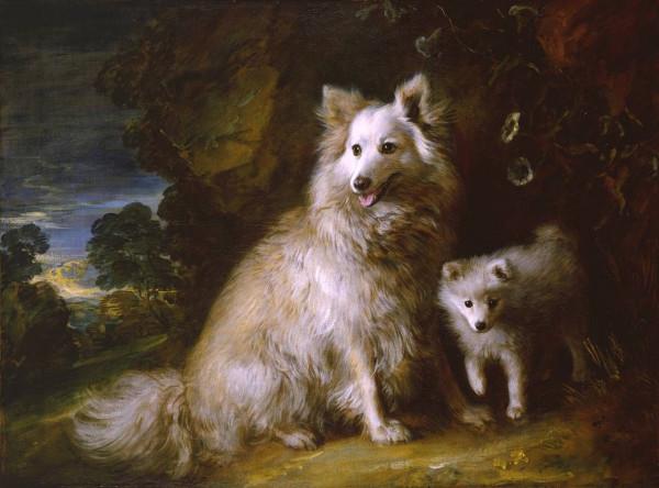 Томас Гейнсборо. Померанский шпиц со щенком.