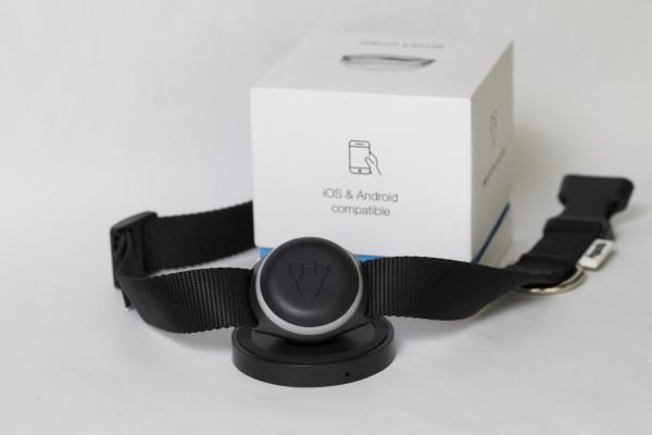 GPS-трекер для собак Mishiko