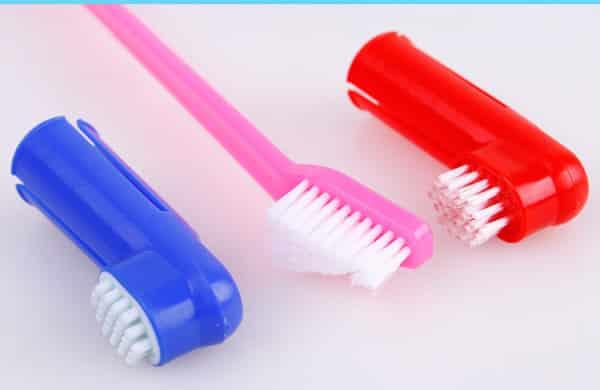 Виды собачьих зубных щеток